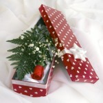 a box with a red rose